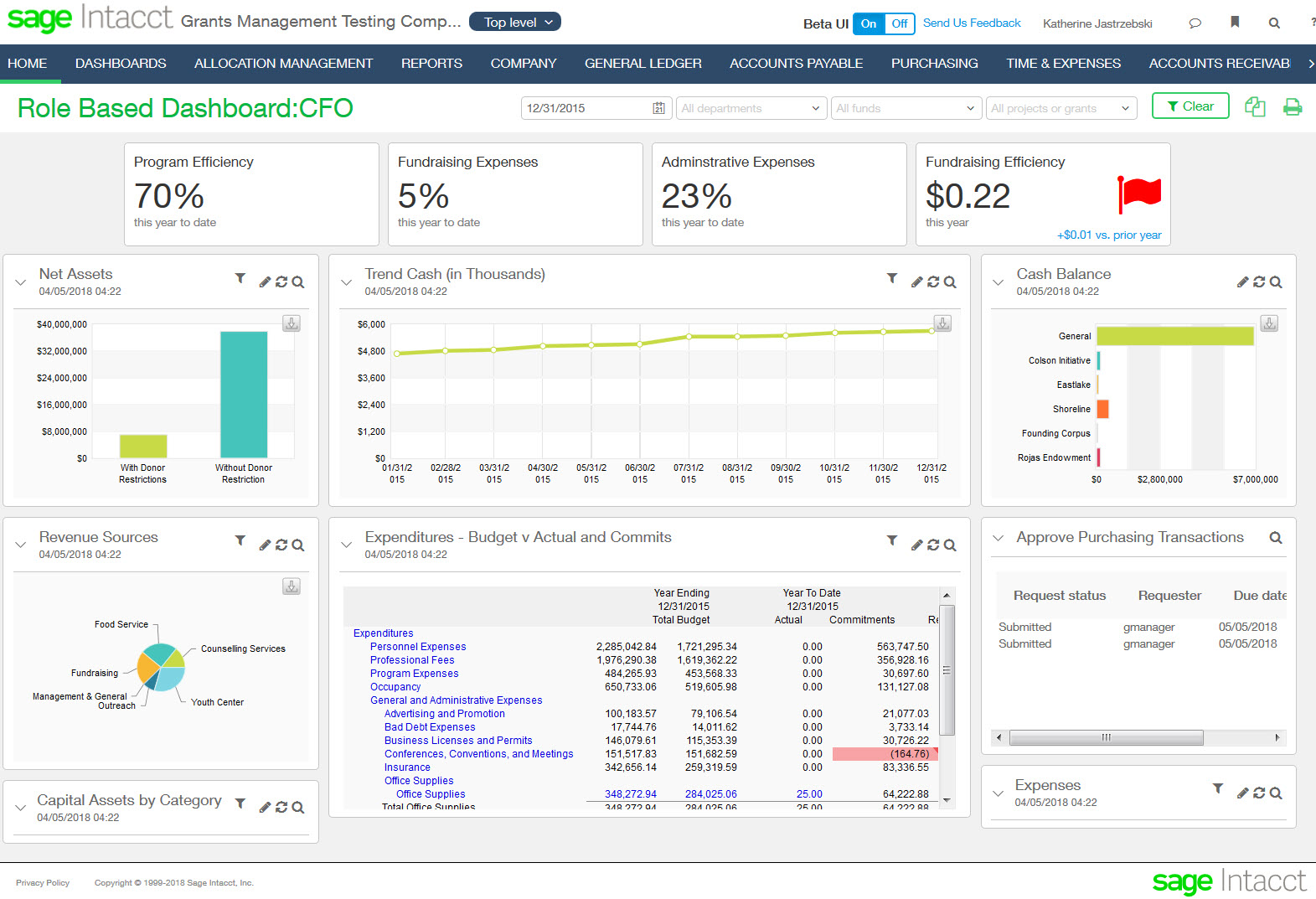 Sage Intacct Not for Profit Role Based Dashboard